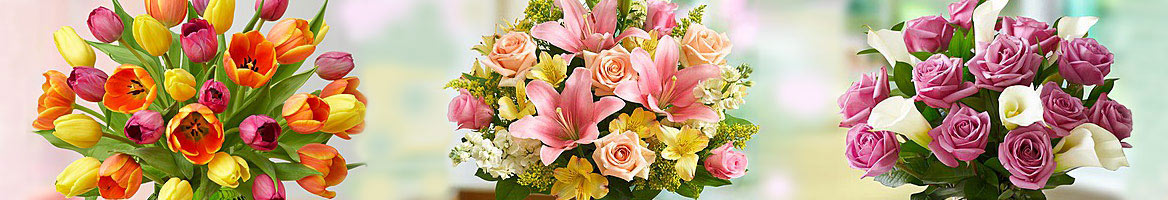 1800FLOWERS Coupons, Promo Codes & Cash Back