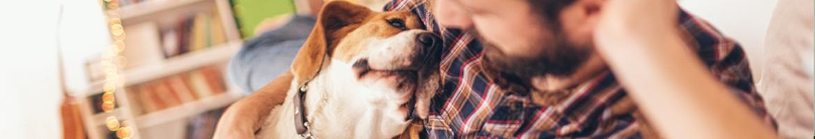 PetSmart Coupons, Promo Codes & Cash Back