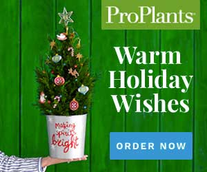 Shop at ProPlants with 12.0% Cash Back