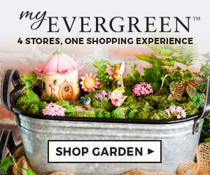 Shop at MyEvergreen with 3.5% Cash Back