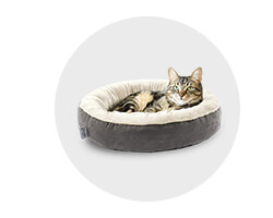Get up to 4.0% Cash Back on Pet Food & Supplies at Amazon.