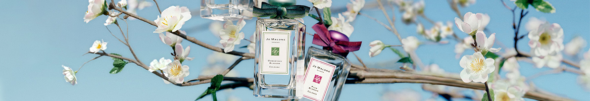 Jo Malone London Coupons, Promo Codes & Cash Back