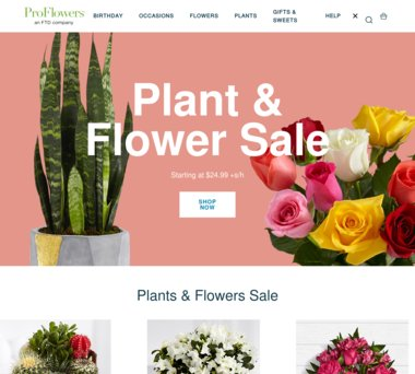 Proflowers Coupons Promo Codes 220 Cash Back